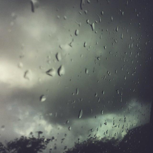 Wintry wet day - Sally O'Reilly